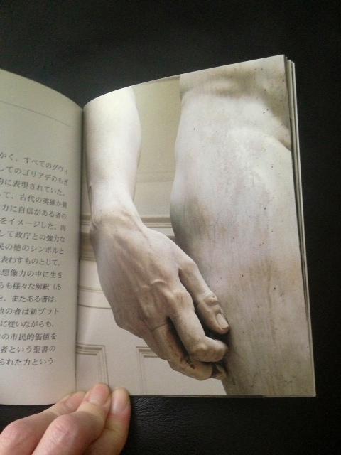 手のアップ1_ダヴィデ様ミニ写真集.jpeg